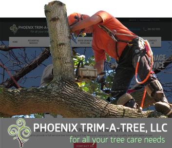 internet-marketing-for-tree-service-companies-in-arizona