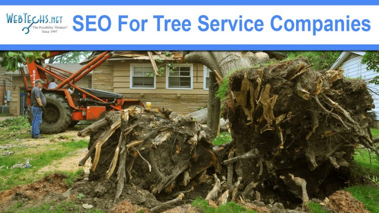 SEO For Tree Service Companies